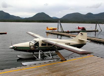 Photo of Alaska Plane Tour