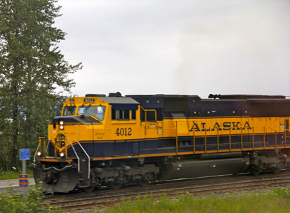 Alaska Train Tour Photo